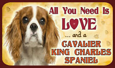 ALL YOU NEED IS LOVE AND A CAVALIER KING CHARLES SPANIEL  SIGN - DOG DOGS KENNEL