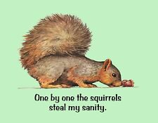 METAL REFRIGERATOR MAGNET One By One Squirrels Steal Sanity Family Friend Humor
