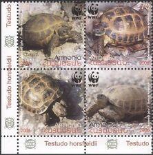 Armenia 2007 WWF/Russian Tortoise/Animals/Nature/Wildlife 4v set blk (n18603)