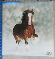 Bud Light Running Clydesdale Horse vintage 1983 Budweiser Anheauser Busch Poster