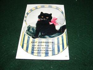 VINTAGE POSTCARD SOUVENIR EAST GRINSTEAD NOVELTY LUCKY BLACK CAT DROP DOWN