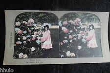 STA650 Filleette fleurs couleurs STEREO albumen Photography Stereoview