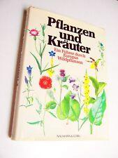 Pflanzen und Kräuter. Wildpflanzen.Bestimmungsbuch