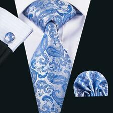 Hi-Tie Good Quality Paisley Sky Blue and Silver Nicktie Sets Formal Gifts N-1618