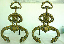 Beautiful , Antique French  pair of andirons in gilt bronze, lion decoration