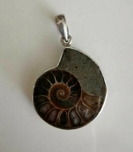 Ammonite Pendant with Solid Silver Rim and Bale