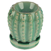 Small Green Cactus Wax Warmer/Burner & 10 Handpoured Scented Melts