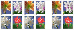 US 4865d Winter Flowers imperf NDC booklet (20 stamps) MNH 2014