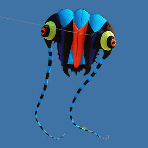 36㎡ Super Big Trilobite Kite for Adults Outdoor Beach Flying Sport Show Toys