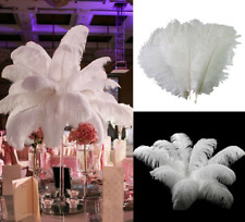 Wholesale White Natural Ostrich Feathers 12-14 Inch Home Wedding Party Decor DIY