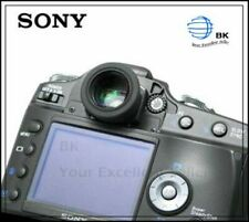 Film SLR