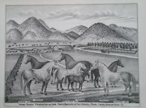 1885 Home Ranch Poindexter & Orr Horse Breeders Print Pearl Creek MT Territory
