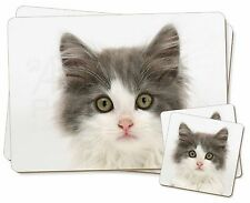 Grey, White Kittens Face Twin 2x Placemats+2x Coasters Set in Gift Box, AC-153PC