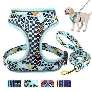 Nylon Dog Harness and Leash Reflective Breathable Adjustable Vest French Bulldog