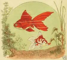 Goldfish View to Profit 1883 Book fish