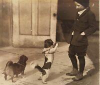 VINTAGE ANTIQUE '23 TOY BOY PEKINGESE DOG PEORIA IL VERNACULAR PHOTOGRAPHY PHOTO