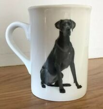 Great Dane By Pets Dimension Cup/Mug/Tea/Coffee