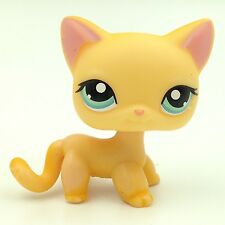 Littlest Pet Shop yellow cat #339 Brooke Raceabout Ranch LPS toys no magnet