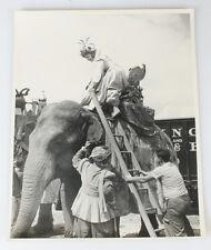 11X14 B W PHOTO  WOMAN  UNUSUAL HAT CLIMBING BARNUM AND BAILEY CIRCUS ELEPHANT