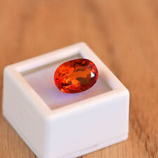 Padparadscha Oval Transparent Loose Sapphires