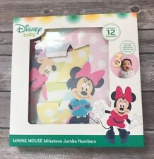 First Year Baby Numbers Disney Minnie Mouse Monthly Photo Props
