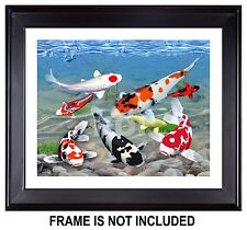 Sanke Live Koi Fish Giclée Print, Jewels of Koi from Original Digital Painting