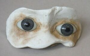 Antique Stationary Glass Doll Eyes set in Plaster Paperweight Grey Fixed P1827
