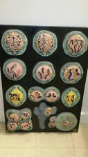 Vintage Mueller Ward Biology 3D Models Reproductive Process 1940's Very Rare