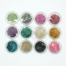 12 Colorful Natural Crushed Shell Stained Paillettes Acrylic Nail Art Manciure