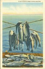 Arcade Fl A 1943 Day's Catch from Florida Waters