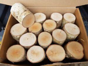 The Little Bundle of Decorative Logs - 12cm Long Fine Sawn Both Ends KD Birch