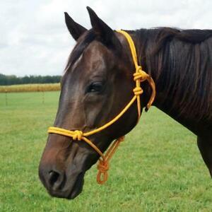 Lot of 10 x 1 New Horse Rope Halter Control Head collar Natural Horsemanship F/S