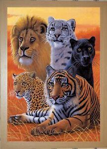 OAK FRAMED BIG CATS LION TIGER PANTHER - 3D LENTICULAR PICTURE 365mm X 465mm
