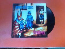 "POWER OF DREAMS Slowdown 12"" Vinyl!"