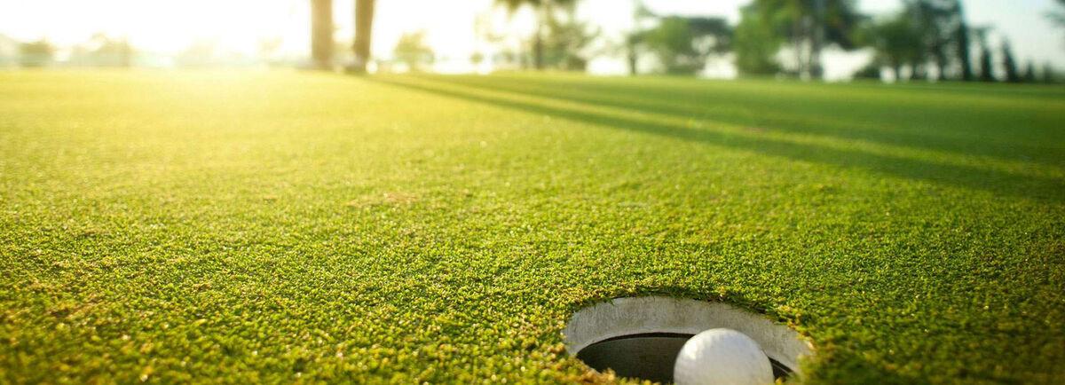 Bargain Golf Polos