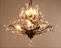European Vintage Style Lights Chandelier/Hanging lamp/Droplight Iron&Glass Black