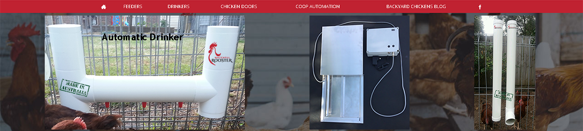 Watchful Rooster Chicken Products
