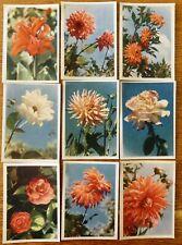 ESTONIA (USSR) : 9 FLOWER POSTCARDS 1962 - UNUSED