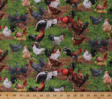 Chickens Roosters Chicks Eggs Farm Animals Cotton Fabric Print by Yard D575.06