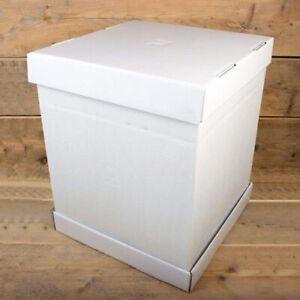 10x PAPSTAR Torten Karton Kuchen Box Verpackung mit Deckel 30x30x13 cm weiß neu