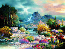 SunsOut Jigsaw Puzzle Springtime Valley James Lee 1000 Pcs 18085 Desert
