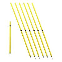 "Slalom Poles Set of 6 Agility Speed Training Soccer Football Telescopic 40"" - 5'"