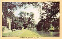 Allentown PA Parkway Path Along Little Lehigh Creek~Willow Trees 1940s Dexter