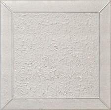 Decorative Ceiling Tiles Styrofoam 20x20 R27 Platinum