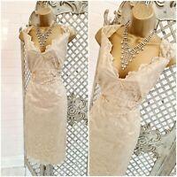 DEBENHAMS 💋 UK 18 New Champagne Gold Shimmer Lace Wiggle Dress Mother of Bride