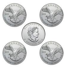 5 x 1 oz Silber 5 Kanada Dollar Birds of Prey Wanderfalke 2014 Stempelglanz
