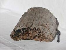 legno di mare base pesante blocco (923) fai da te bricolage shabby deco arte
