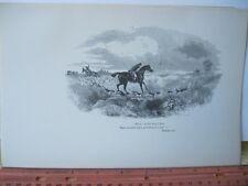 Vintage Print,HARK,Noble Science,Fox Hunting,William Blew,1893