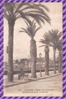 CANNES - Allées des Palmiers Boulevard de la Croisette