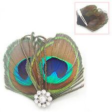 Little Cute Peacock Feather Hair Clip N3